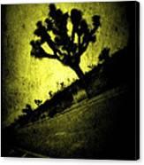 Black And Yellow Joshua Tree Poster Canvas Print