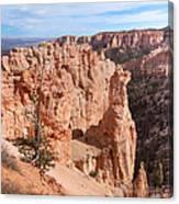Black Birch Canyon Lookout Canvas Print