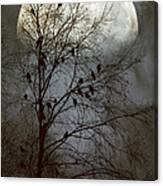Black Birds Singing In The Dead Of Night Canvas Print