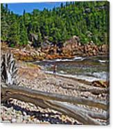 Black Brook In Cape Breton Highlands Np-ns Canvas Print