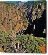 Black Canyon Canvas Print