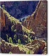 Black Canyon Of The Gunnison Canvas Print
