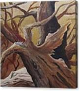Black Cap Chickadee Canvas Print