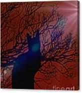 Black Cat In The Moonlight Canvas Print