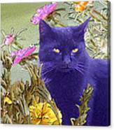 Black Cat Lurking In The Portulaca Canvas Print