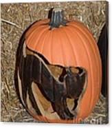 Black Cat On Pumpkin Canvas Print