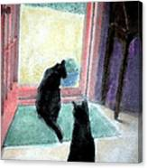 Black Cats Canvas Print