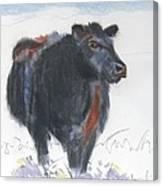 Black Cow Drawing Canvas Print
