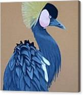 Black-crowned Crane Canvas Print
