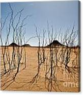 Black Desert Canvas Print