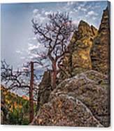 Black Hills Boulders Canvas Print