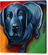 Black Lab Canvas Print
