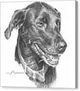 Black Lab Pencil Portrait Canvas Print