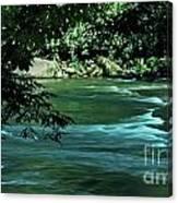 Black River Nj Canvas Print