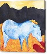 Black Rock Canvas Print