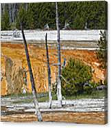 Black Sand Basin Therma Runoff Yellowstone Canvas Print