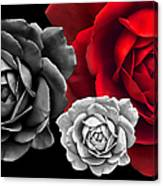 Black White Red Roses Abstract Canvas Print