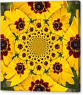 Blackeyed Susan Kaleidoscope Canvas Print