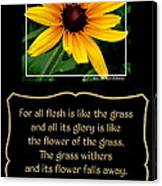 Blackeyed Susan With Bible Quote From 1 Peter Canvas Print