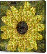 Blackeyed Suzy Mosaic Canvas Print