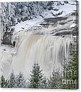 Blackwater Falls D300_13581 Canvas Print