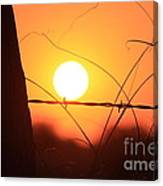Blazing Orange Fence Line Sunset Canvas Print