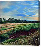 Blazing Sun On Farmland Canvas Print
