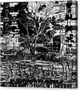 Bleak Renewal Canvas Print