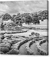Bleak Topiary  Canvas Print