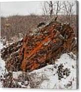 Bleak Winter Arctic Steppe Orange Lichens Rock Canvas Print
