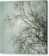 bleakly II Canvas Print