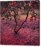 Bleeding Tree Canvas Print