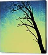 Bleu Et Jaune Canvas Print