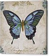Bleu Papillon-a Canvas Print