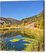 Beauty In Colorado Canvas Print