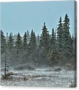 Blizzard Conditions Canvas Print