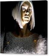 Blonde Highlights Canvas Print