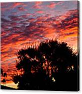 Bloody Sunset Over Palm Desert Canvas Print