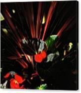 Bloomin Bew-t Canvas Print