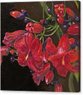 Bloomin' Red Canvas Print