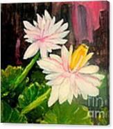 Blooming At Night  Canvas Print