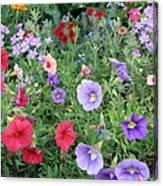 Blooming Extravaganza Canvas Print