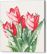 Sunlit Tulips Canvas Print