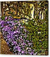 Blooms Beside The Steps Canvas Print