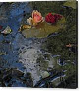 Blossom Rain 13 Canvas Print