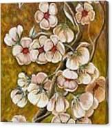 Blossom Time Canvas Print