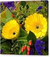 Blossom Yellow Gerbera Canvas Print