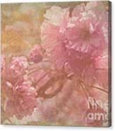 Blossoms Splender Canvas Print
