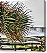 Blowin At The Beach Canvas Print