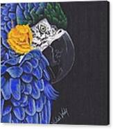 Blu And Gold Macaw Canvas Print